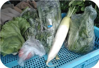 20180426野菜のマイクロマーケットミニミニセット