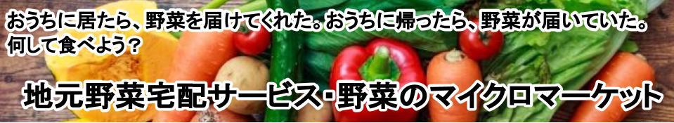 おうちにいたら、野菜を届けてくれた。おうちに帰ったら、野菜が届いていた。何して食べよう。地元野菜宅配サービス・野菜のマイクロマーケット
